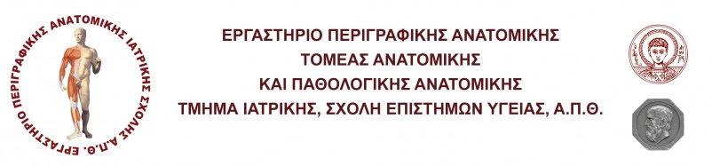 anatomylab.web.auth.gr
